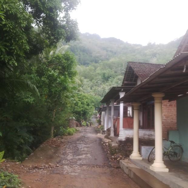 Bukit Kodok Bangkong